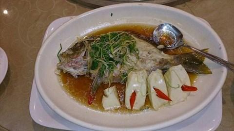 港式海上鮮:這魚真的很新鮮,肉質軟嫩,配上豆腐,口感極佳。